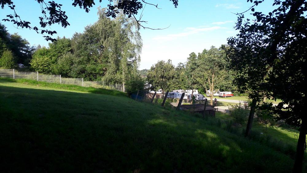 Hundeauslaufwiese direkt am Stellplatz