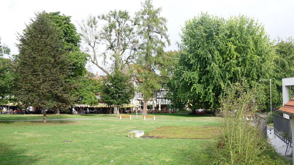wunderschöner Kurpark in der Ortslage Bad Sooden
